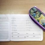 Máris őrület van az általános iskolai beiratkozások körül?