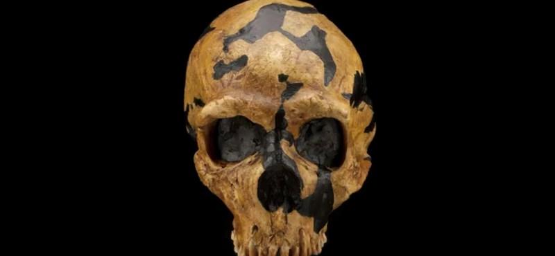 Egy ősember csontváza árulkodó: jobban hasonlított hozzánk, mint eddig gondoltuk
