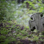 Eltűnt egy ceglédnyi magyar