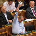 Szerencsére ma sem maradtunk Fidesz-MSZP catfight nélkül!