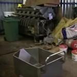 Illegális szarvasmarhavágást lepleztek le Heves megyében