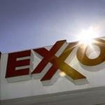 Feltámadt a vadvilág, megúszott egy újabb kártérítést az Exxon