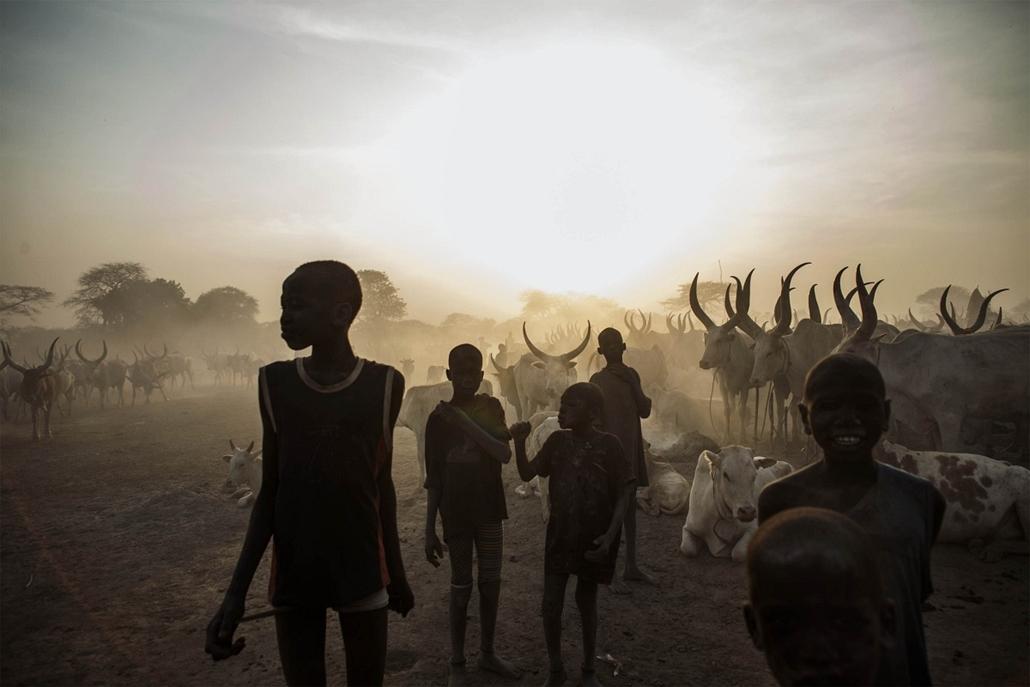 afp.14.02.12. - Yirol, Szudán: a Dinka-csoport gyermekei egy szarvasmarhák közt - 7képei