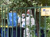 Belső vizsgálat volt a rendőrségen, szinte biztosan a budapesti családgyilkossággal összefüggésben