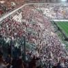 Zsarolás, pénzmosás miatt vettek őrizetbe Juventus-szurkolókat