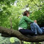 A magyar fiatal munkát könnyen talál, megélhetést viszont nehezen