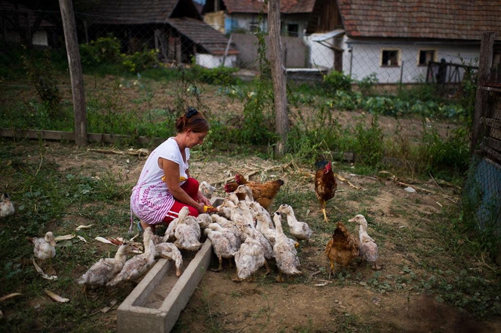 Álmok és vágyak Bódvalenkén és Észak-Magyarországon, szegénység, cigányság, roma, nagyítás