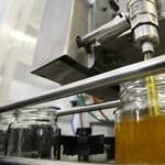 A gyógyító, folyékony arany – 10 tipp, hogy melyik mézfajtát mire használjuk