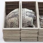 Brooklyni tetoválóművész faragott szobrokat bankjegyekből