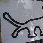 Kukába dobta az NVB a kutyapárt három népszavazási kezdeményezését