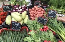 Nem áll meg az élelmiszerek drágulása – itt az új inflációs adatok
