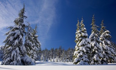 Itt a tél, közeleg az év vége - nyolc helyzet, amit minden diák ismer