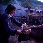 Így élnek a moldvai magyarok – Nagyítás-fotógaléria