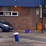 A nap hőse a macskamentő kikötői munkás – videó