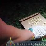 Olasz drogdílert fogtak el a Szigeten