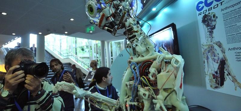 Robotok barátkoznak velünk a Facebookon