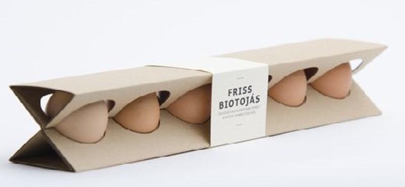 Törésálló tojástartót fejlesztett ki egy magyar