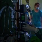 Megugrott a koronavírus miatt elhunyt betegek száma