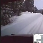 Videó: 160-nal tesztelt a ralis az erdőben, amikor felbukkant két ácsorgó jávorszarvas