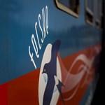 Holttestet találtak egy vonat vécéjében a Nyugatiban