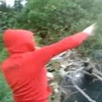Videó: állatkínzó kislány sokkolja a világot