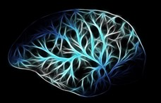 Egyes esetekben 10 évet öregedhet az agy a koronavírus-fertőzötteknél