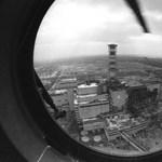 Különleges növényt ültethetnek a csernobili tiltott zónában