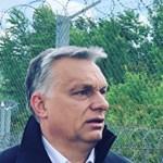 Landolt Salvini Budapesten, már a határzár mellett van Orbánnal