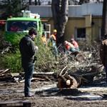 A Liget-projekt elleni tiltakozás összehozta Szörényit és Bródyt