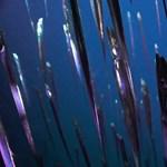 17 éve szenved az otthagyott rothadó halszósz bűzétől egy kanadai város
