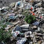 Nagytakarításra buzdítanak a sztárok Budapesten
