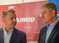 A DK színeiben indul az előválasztáson Molnár Gyula, az MSZP volt elnöke