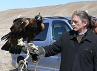 """""""A jelenlegi vezetés alkalmatlan"""" – győztes pályázatában elődeit ekézi a Természettudományi Múzeum új vezetője"""