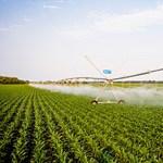 Észszerűtlen zöldszabályok kötik gúzsba a hazai mezőgazdaságot?