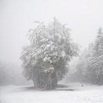 Hideg, havazás, hófúvás - hétfőn minden fronton támad a tél