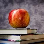 Sokan már a diplomaszerzés előtt megbánják, hogy tanárnak álltak