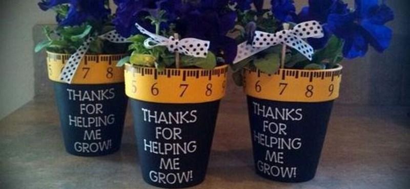 A négy legjobb ballagási ajándék tanároknak - ezeknek mindenki örülni fog