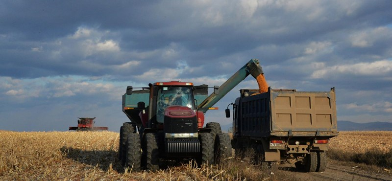Arrébb rakta Belgium határát egy földműves, mert zavarta a traktorozásban