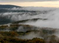 Köd miatt adott ki figyelmeztetést a rendőrség