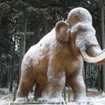 Nehéz, de nem lehetetlen a mamut klónozása