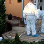 Nyíregyházi gyilkosság: megbánta tettét a román orvos