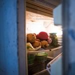 Lemaradt az államilag finanszírozott hűtőgépcseréről? Van igazság!