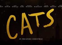 Egy szavunk van az élőszereplős Macskákra: para