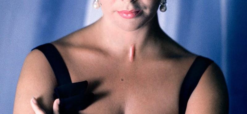 Elkelt Elizabeth Taylor luxusvillája