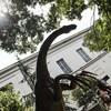 Debrecen örömmel fogadja az új Természettudományi Múzeumot