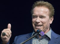 Amerikai tüntetések: Arnold Schwarzeneggernek is van egy tanácsa