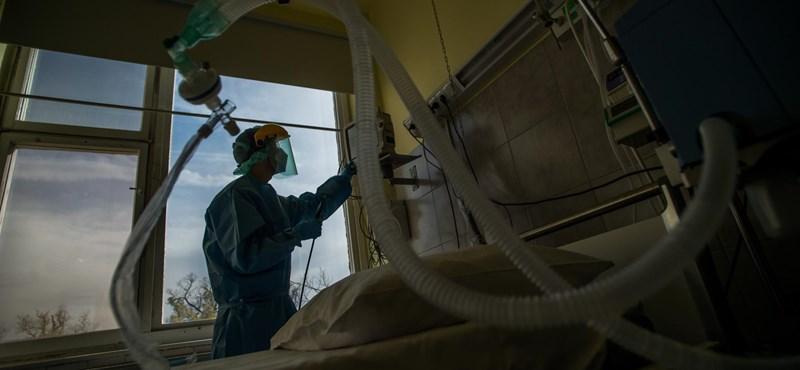 """Kínai tudósok: """"csendes"""" vírushordozót csinálhat a gyermekekből a koronavírus"""