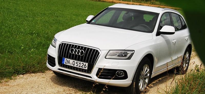 Audi SQ5/Q5 nemzetközi bemutató
