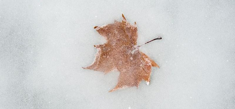 A lakástulajdonosokat sem kímélte a januári extrém hideg
