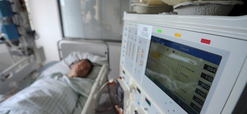 Még mindig tabutéma az eutanázia